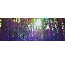 Pixel Trees Photographic Print