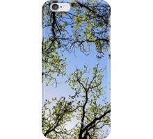 Tree foliage iPhone Case/Skin