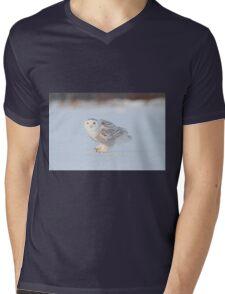 Lurking Mens V-Neck T-Shirt