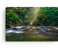Light Shining Down on A Gentle Water Fall Canvas Print