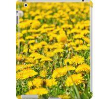 Beautiful countryside landscape in Transylvania iPad Case/Skin