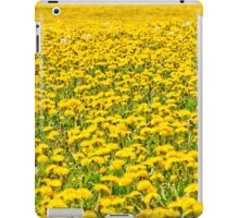 Beautiful countryside landscape in Transylvania, with green grass and dandelions iPad Case/Skin