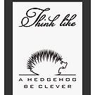 Think like a Hedgehog by vivendulies