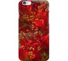 Ocotillo Red Bloom iPhone Case/Skin