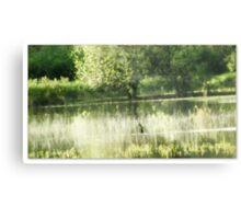 Wetlands Tree Metal Print