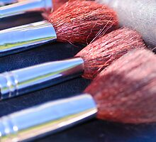 Professional make-up brushes closeup by Stanciuc
