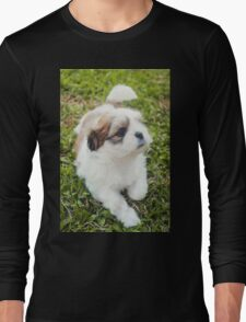 Shitzu Dog Long Sleeve T-Shirt