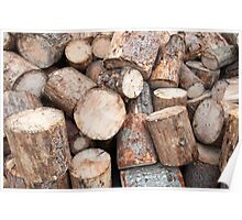 View of firewood logs in a stack Poster
