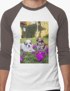 Shitzu Dog Men's Baseball ¾ T-Shirt