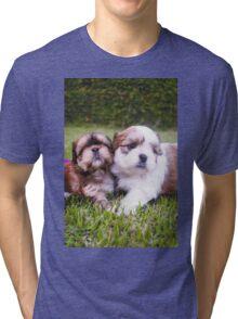 Shitzu Dog Tri-blend T-Shirt