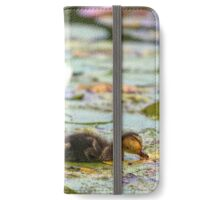 Balls of fluff on water lily iPhone Wallet/Case/Skin