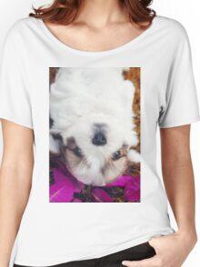 Shitzu Dog Women's Relaxed Fit T-Shirt