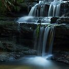 Leura Cascades _ Blue Mountains NSW by Barbara Burkhardt