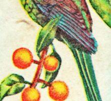 New Zealand Bird Print Sticker