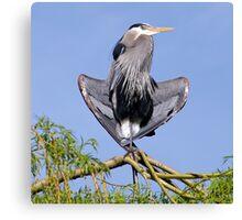 Yoga Heron Canvas Print