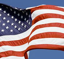 Old Glory Waves by Kenneth Keifer