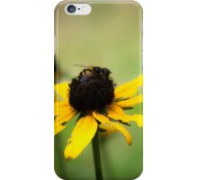 Bee on a Black-eyed Susan iPhone Case/Skin