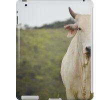 Cow iPad Case/Skin