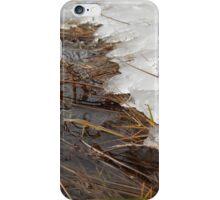 Ice Melt iPhone Case/Skin