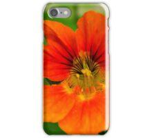 last autumn flower iPhone Case/Skin