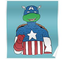 American Turtle Poster