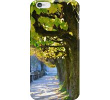 Autumn Sun, Salzburg iPhone Case/Skin