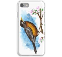 Bird Painting illustration iPhone Case/Skin