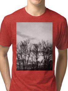 Trees Going Nowhere Tri-blend T-Shirt