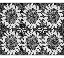 Black and White Floral Photographic Print