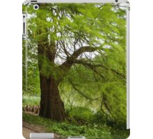 Two monumental swamp cypresses iPad Case/Skin