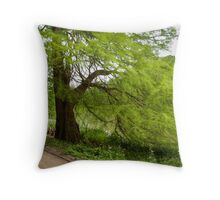 Two monumental swamp cypresses Throw Pillow