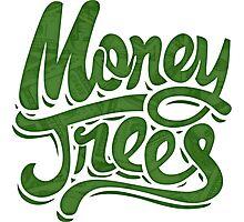 Money Trees - Green Photographic Print