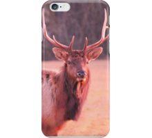 Close Up Elk iPhone Case/Skin