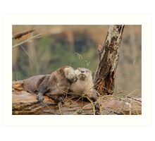 Two River Otters Art Print