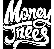 Money Trees - White Photographic Print