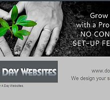 Web Design Seo Company in Jackson by dollaradaysit0
