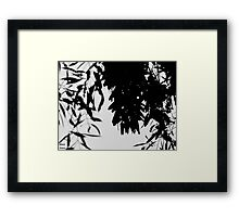 The Butterflies Shadow  Framed Print