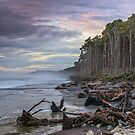 Bruce Bay by Images Abound | Neil Protheroe