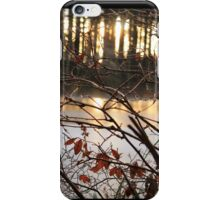 Frozen lake iPhone Case/Skin