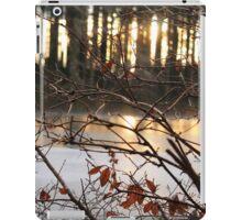 Frozen lake iPad Case/Skin