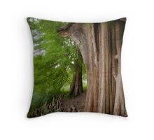 Under the swamp cypresses Throw Pillow