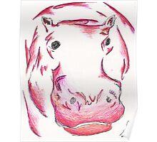 Pink/Orange Hippopotamus Poster