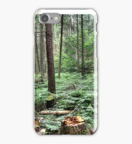 Forest glade iPhone Case/Skin
