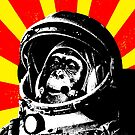 Space Chimp by monsterplanet