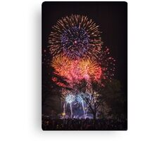 Pop Goes the 4th Canvas Print