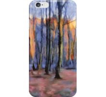 Winter Sunset In The Beech Wood iPhone Case/Skin