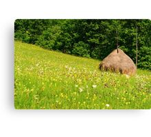 Beautiful countryside landscape with flowers, grass and haystack Canvas Print