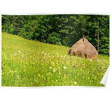 Beautiful countryside landscape with flowers, grass and haystack Poster