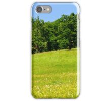 Beautiful countryside landscape with flowers iPhone Case/Skin