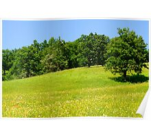 Beautiful countryside landscape with flowers Poster